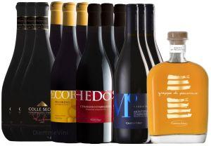 Offerta Degustazione 13 Bottiglie Cantina Tollo