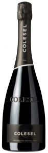 Prosecco Doc Treviso Extra Dry Colesel