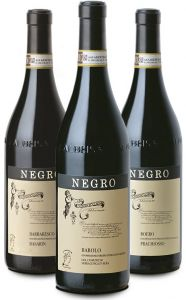 Degustazione 3 Bottiglie Vini Negro Angelo