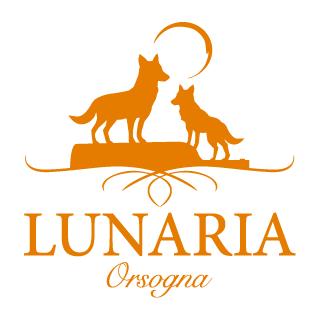Lunaria Orsogna
